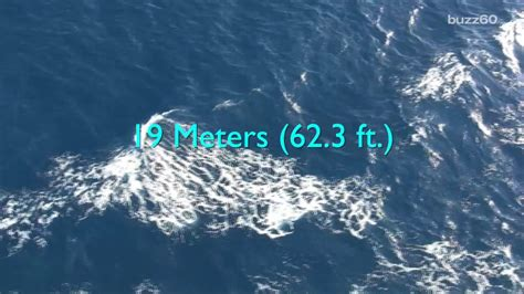 The Largest Wave Ever Recorded Officially Announced - YouTube